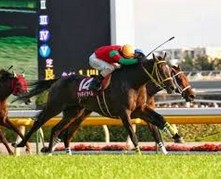 2012府中牝馬マイネイサベル