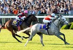 2012菊花賞ゴールドシップ
